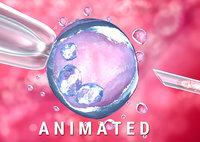 artificial insemination : glass 3D