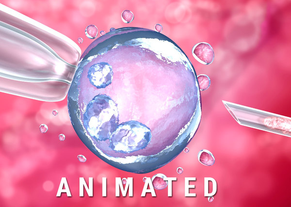artificial insemination : glass 3D