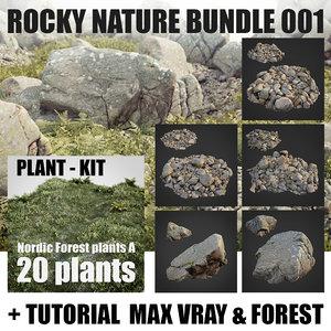 rocky nature 001 rocks 3D model