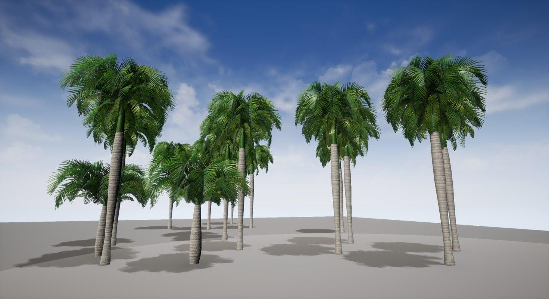royal palm model