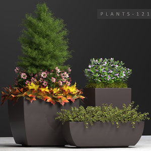 plants set 121 3D model