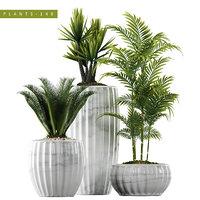 plants set 140 3D model