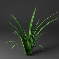 3D plant ready games