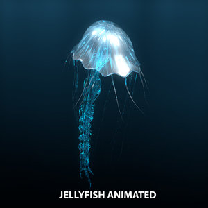 jellyfish animations model
