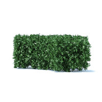 3D curved hedge