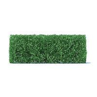 straight hedge 3D