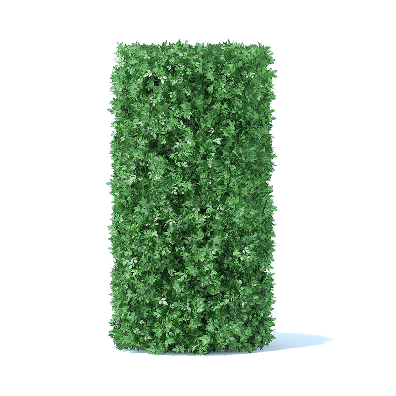 3D cylindrical hedge