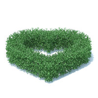 heart shaped hedge model