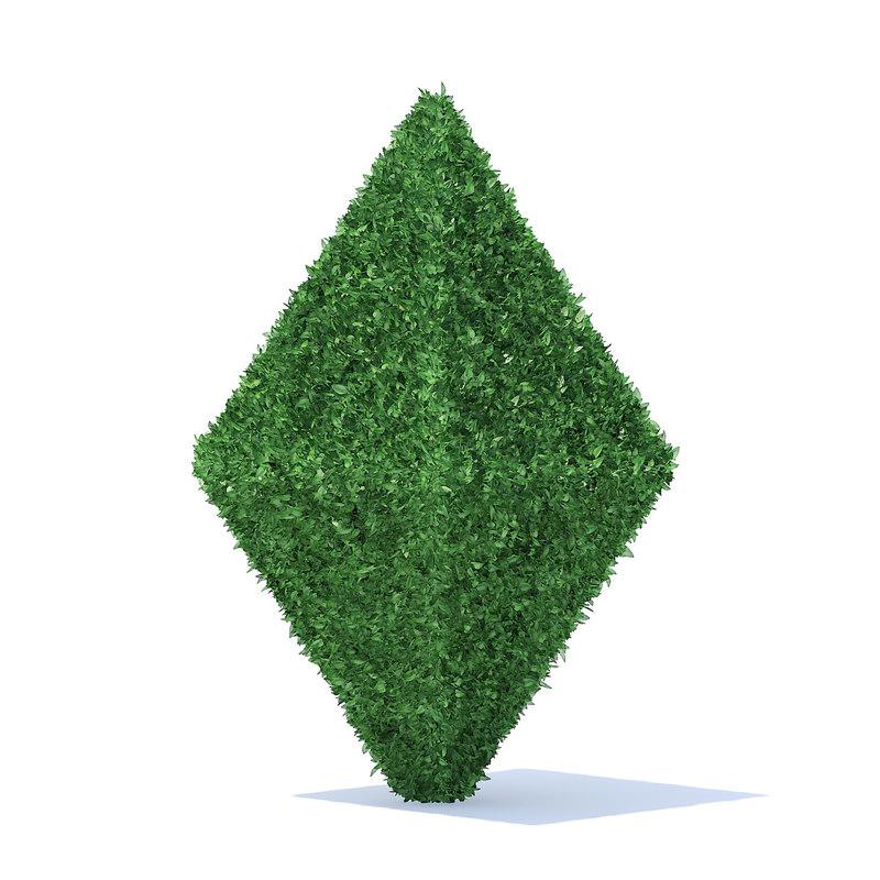 diamond shaped hedge model