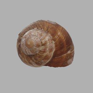 snail shell model