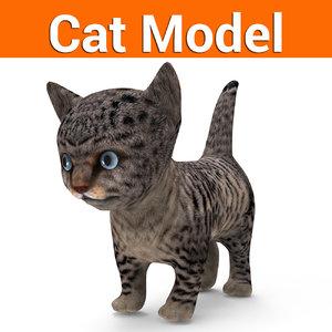cute cat model