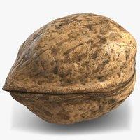 walnut 2 3D model