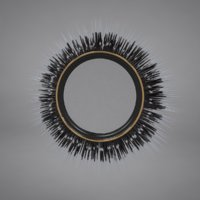 3D model porcupine quill mirror