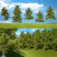 5 trees 3D model