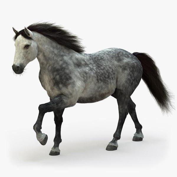 3D model horse animation fur