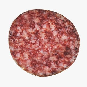 3D salami slice model