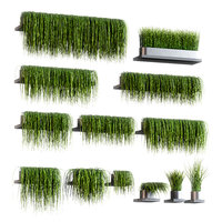 set 13 grass patterns 3D model