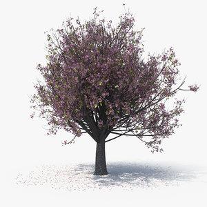 blossom tree 07 3D model
