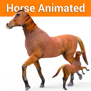 3D horse animation
