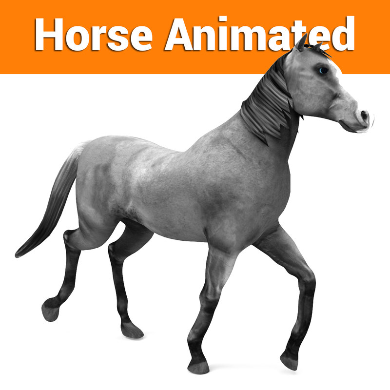 horse animation 3D