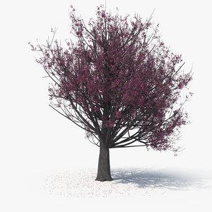 blossom tree 08 model