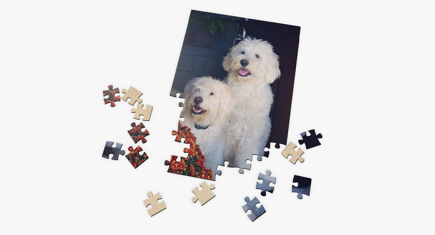 custom puzzle 3D model