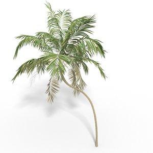 palm 2 model