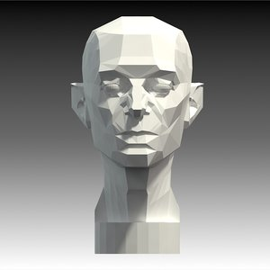 planar head artistic anatomy model
