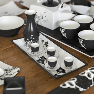 set dishes japanese style model