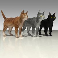 3D model photo-realistic cats