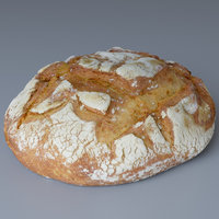 Bread Rustic (Photoscan)