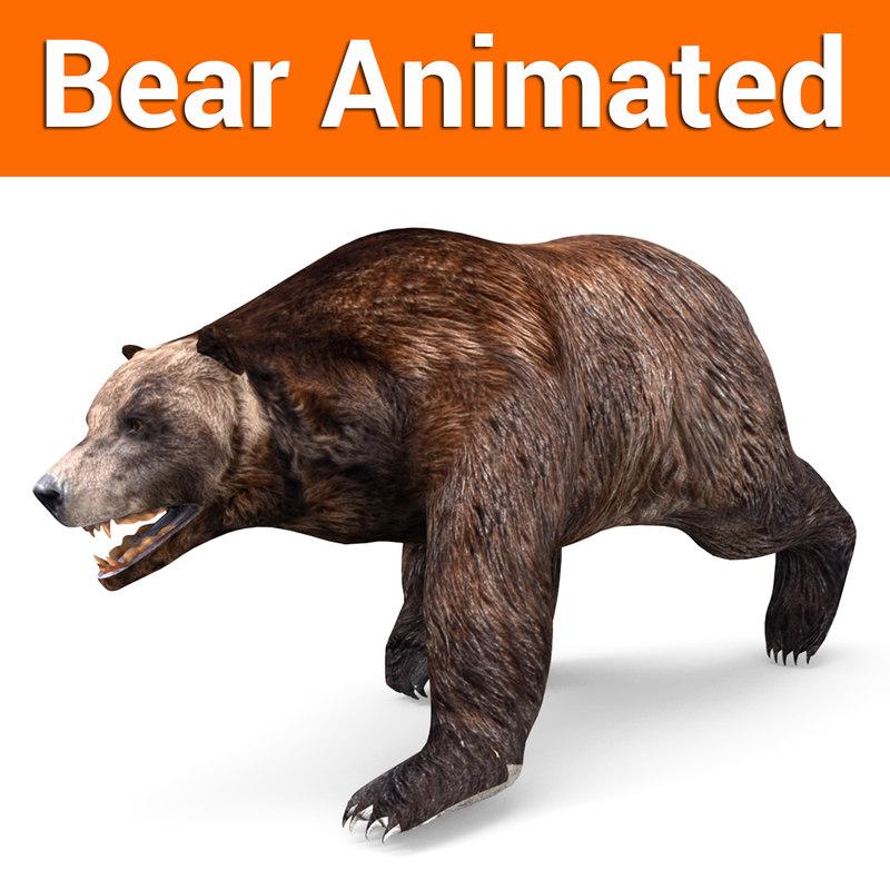 brown bear animation 3D