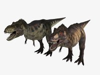 tyrannosaurus 3D