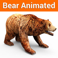 brown bear animation 3D model
