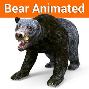 3D black bear animation model