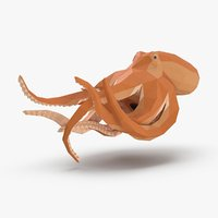 octopus---speeding model