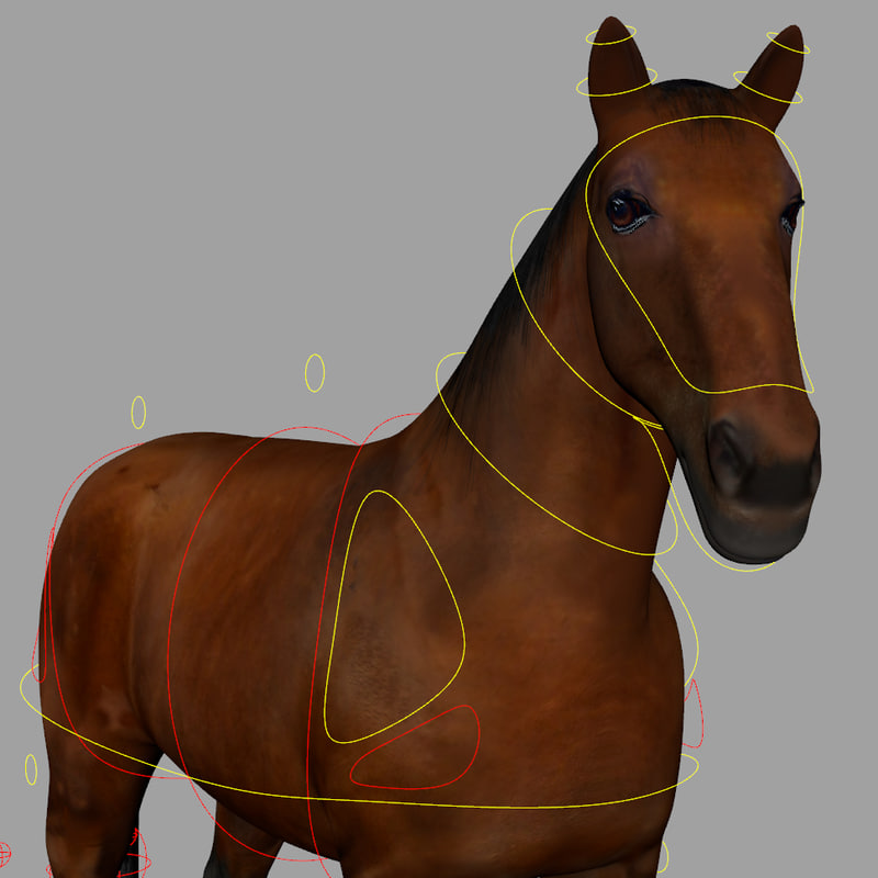 3D horse animations cycle model