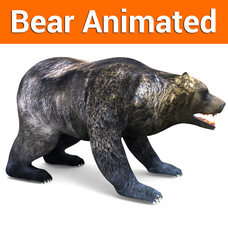 brown bear animation model