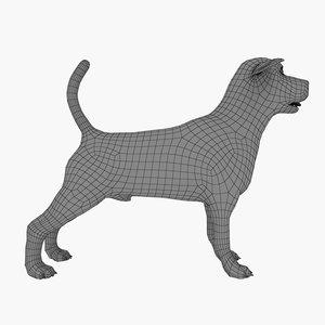 beagle dog base mesh 3D