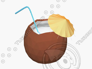 3D coconut cocktail model