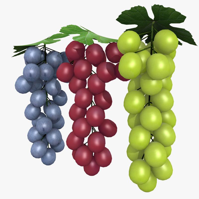 3D blue grapes model
