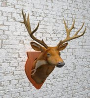 taxidermy deer 3D model