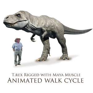 t rex stationary walk cycle 3D model