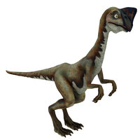 3D model oviraptor raptor