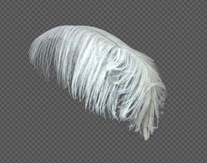 3D ostrich feather