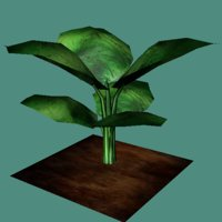 Low poly jungle plant