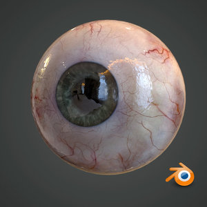 realistic human eye pupil 3D model