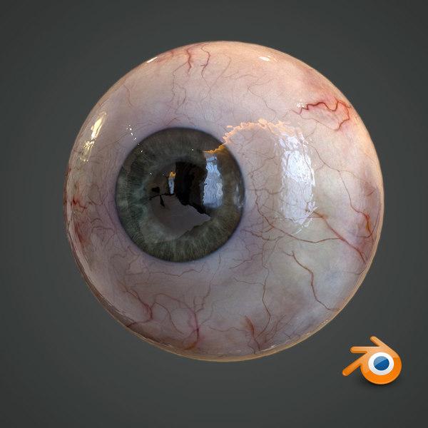 realistic human eye pupil 3D model