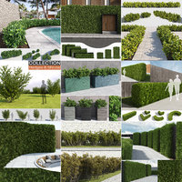 hedges shrubs model