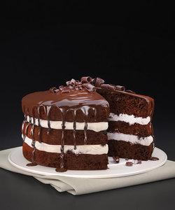 chocolate icing cake model